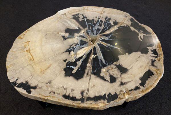 Coffee table petrified wood 34183