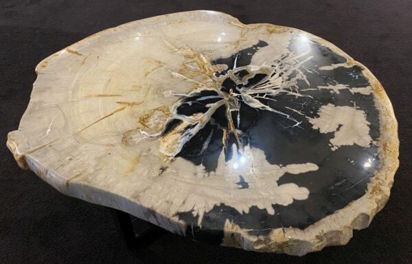 Coffee table petrified wood 34184