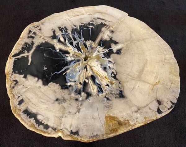 Salontafel versteend hout 34183