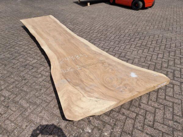 Table suar 26507