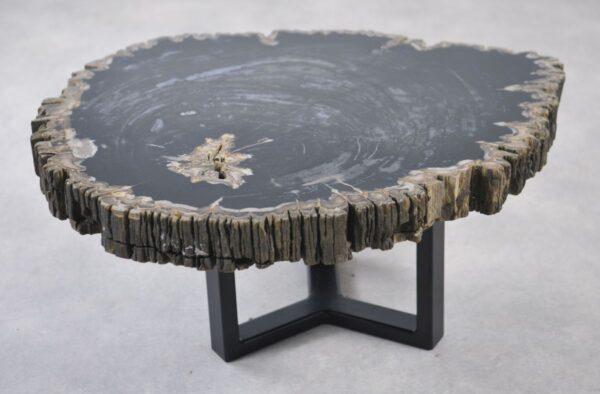 Coffee table petrified wood 35145