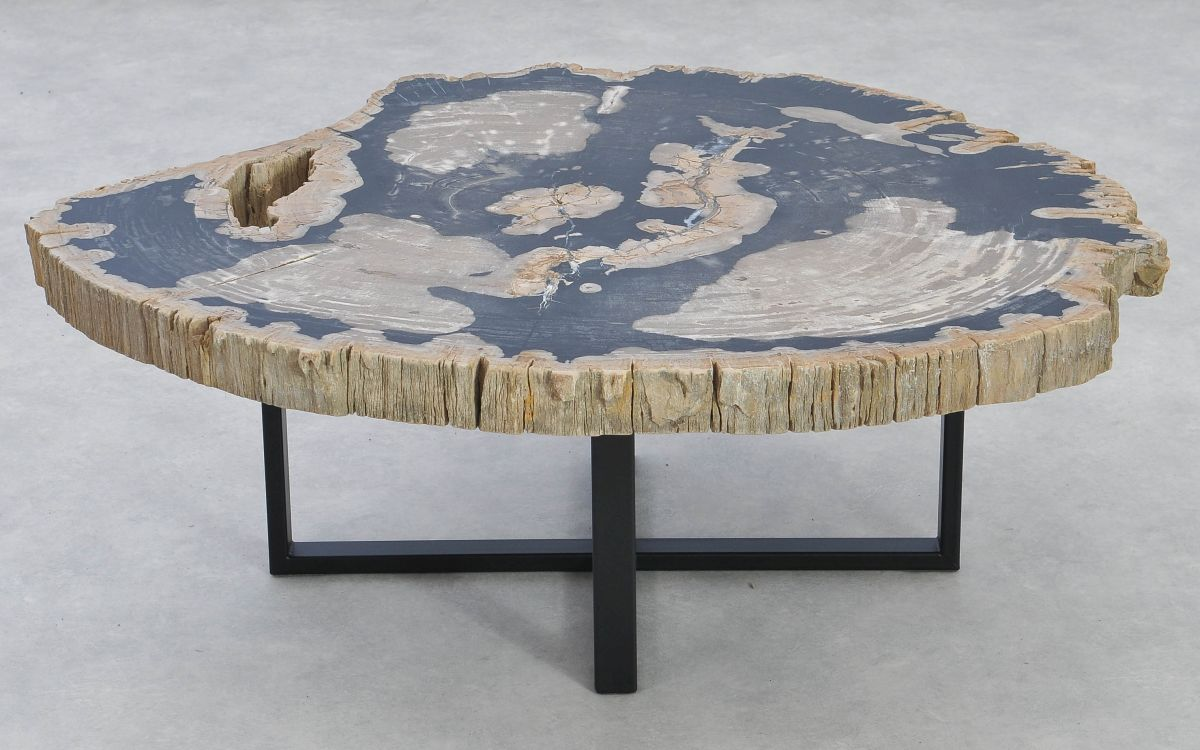 Coffee table petrified wood 37160