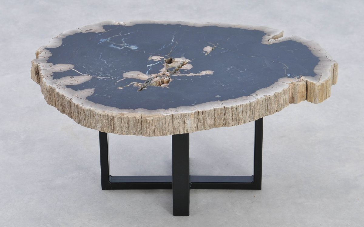 Coffee table petrified wood 37161