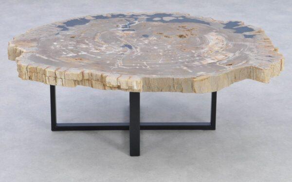 Coffee table petrified wood 37162