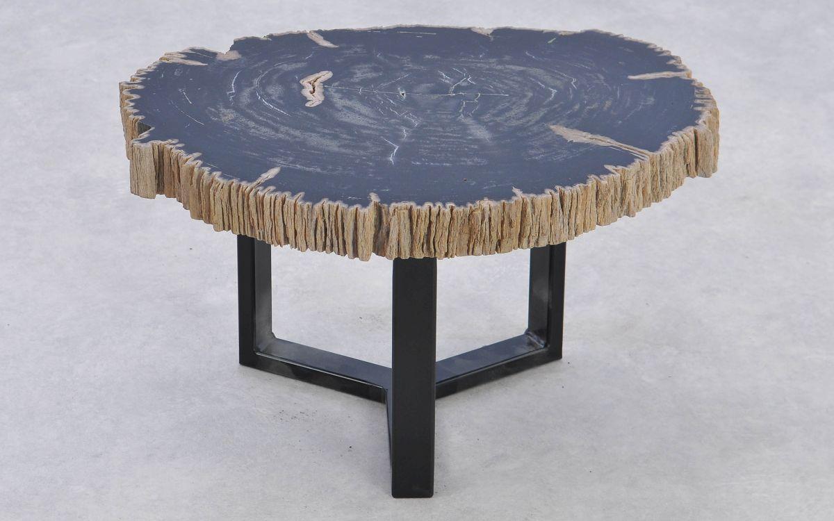 Coffee table petrified wood 37168