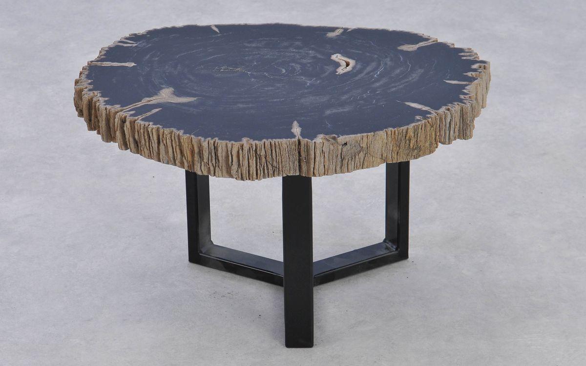 Coffee table petrified wood 37169