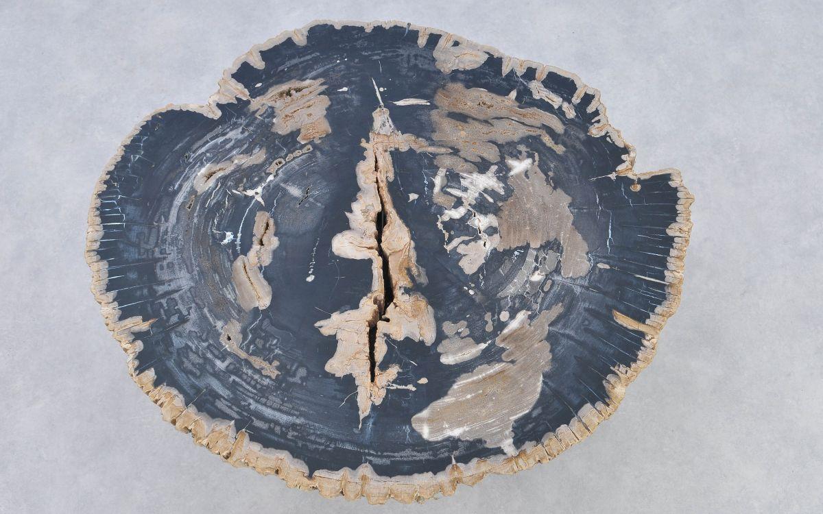Coffee table petrified wood 37172