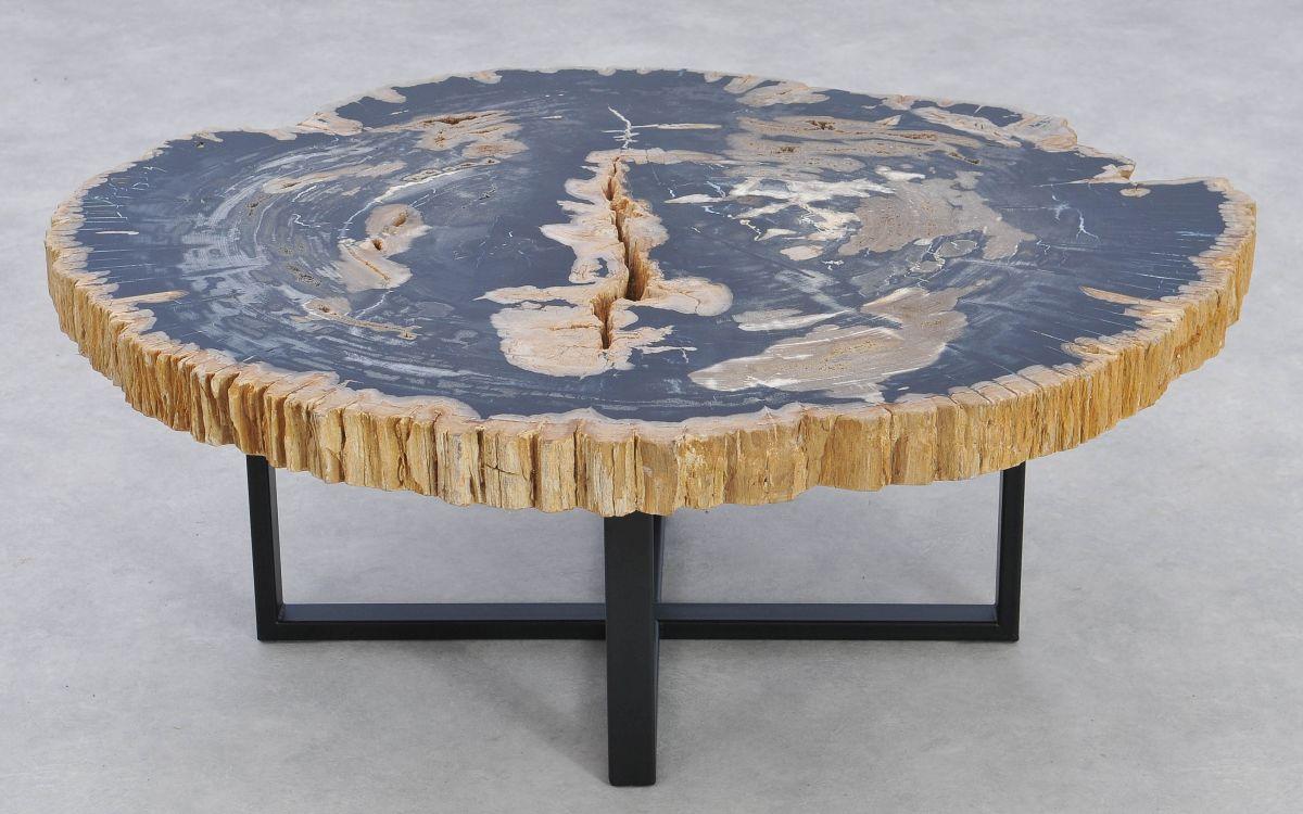 Coffee table petrified wood 37173
