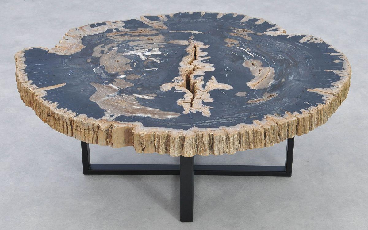 Coffee table petrified wood 37174