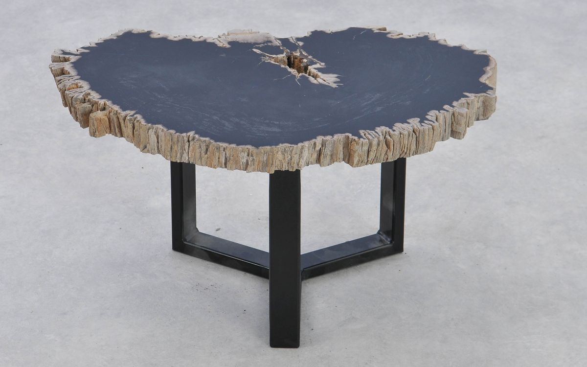 Coffee table petrified wood 37175