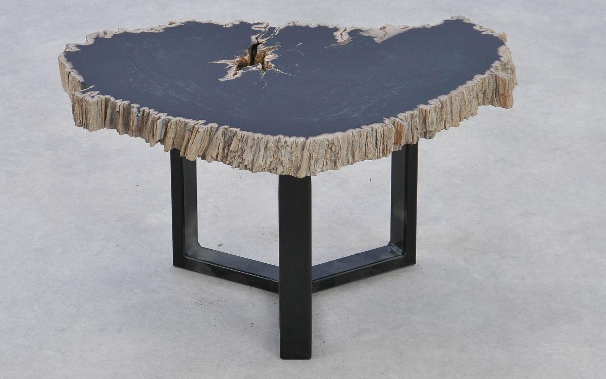 Coffee table petrified wood 37176