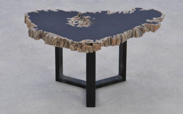 Coffee table petrified wood 37179