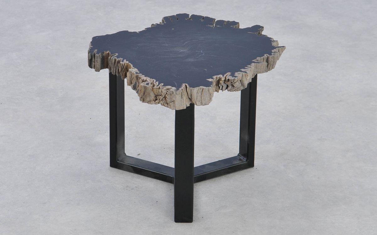 Coffee table petrified wood 37181