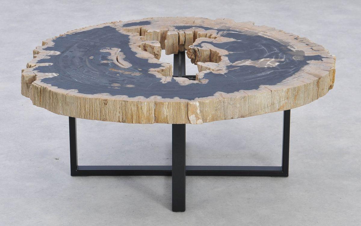 Coffee table petrified wood 37184