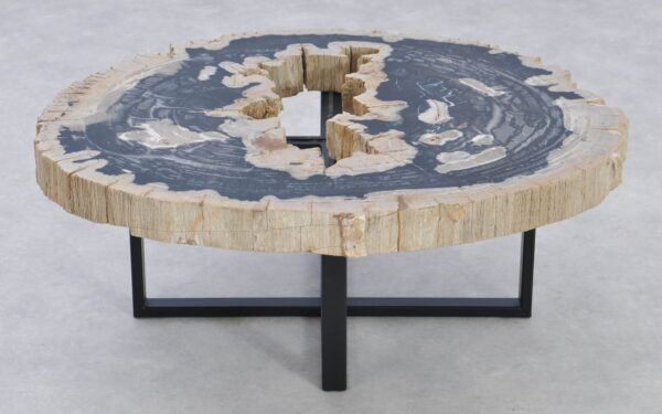 Coffee table petrified wood 37185