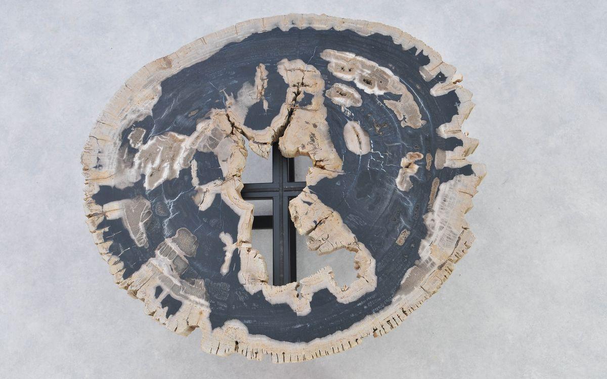 Coffee table petrified wood 37189