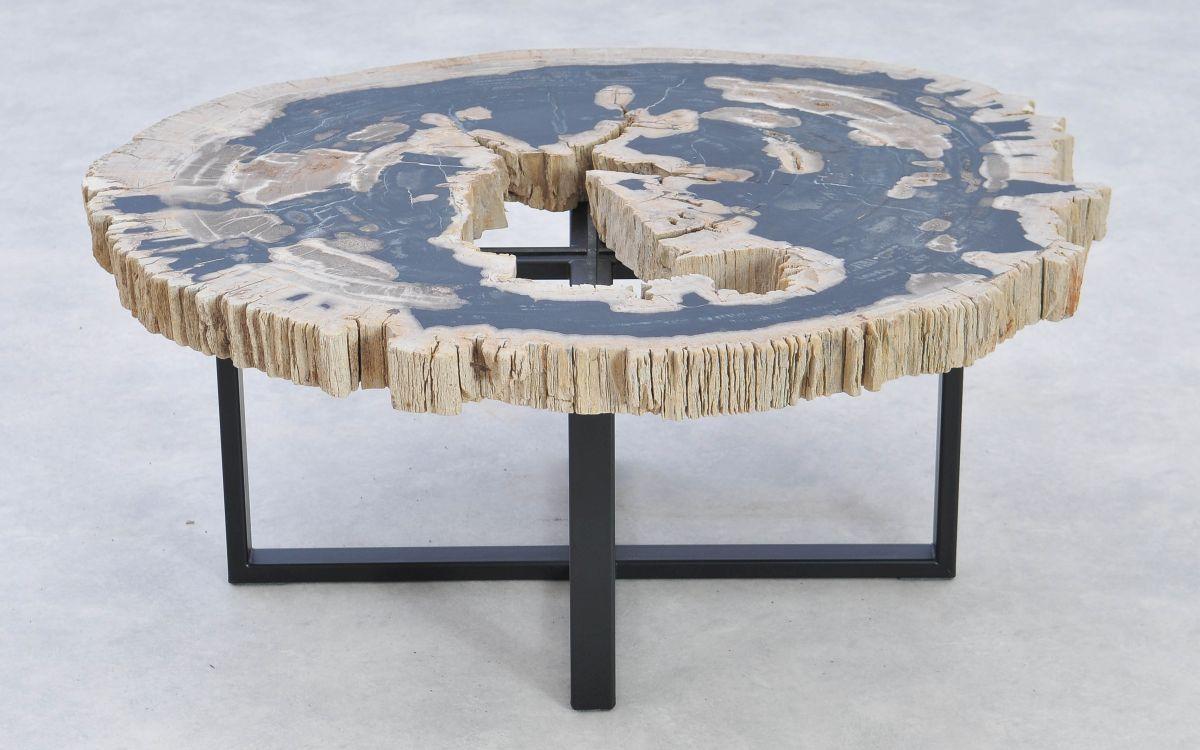 Coffee table petrified wood 37191
