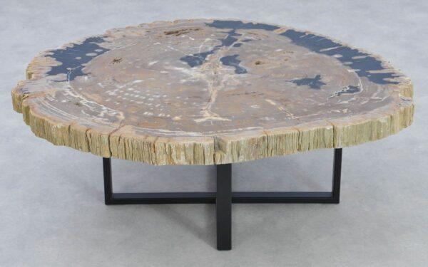 Coffee table petrified wood 37192