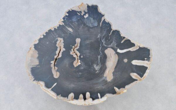 Coffee table petrified wood 37198