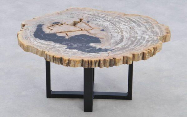 Coffee table petrified wood 37205