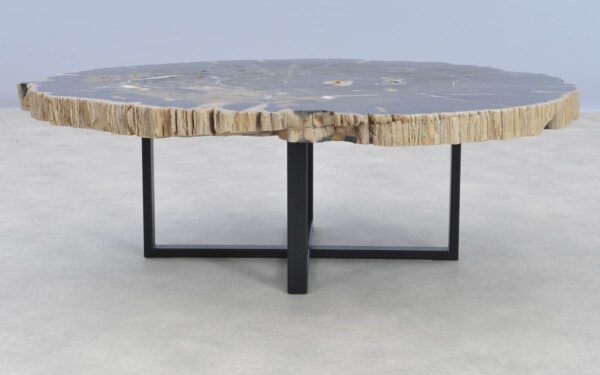Coffee table petrified wood 37211