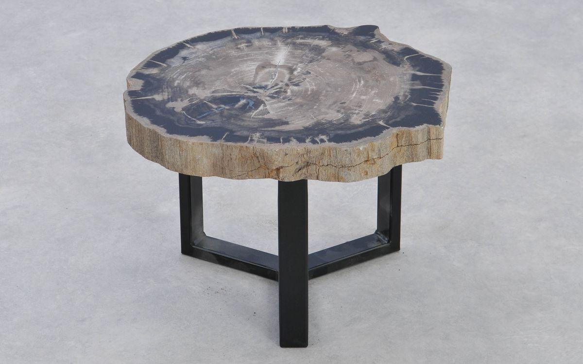 Coffee table petrified wood 37217