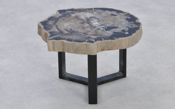 Coffee table petrified wood 37218