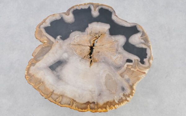 Coffee table petrified wood 37234