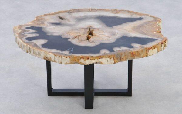 Coffee table petrified wood 37244