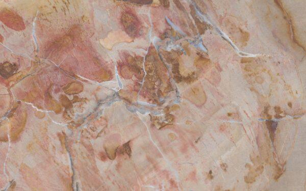 Coffee table petrified wood 37251