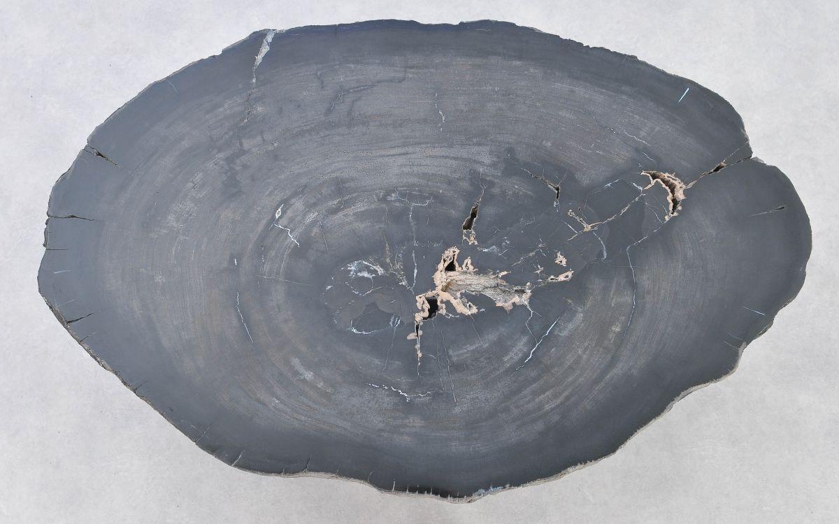 Coffee table petrified wood 37257