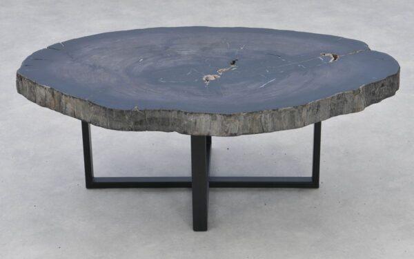 Coffee table petrified wood 37258