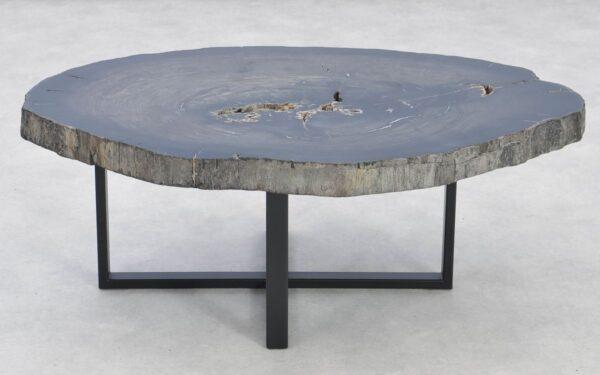 Coffee table petrified wood 37259