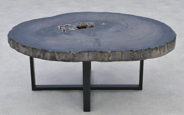 Coffee table petrified wood 37266