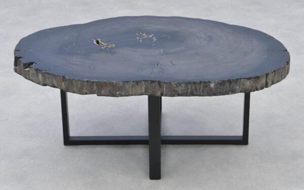 Coffee table petrified wood 37267