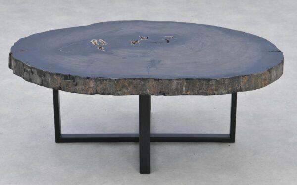 Coffee table petrified wood 37268
