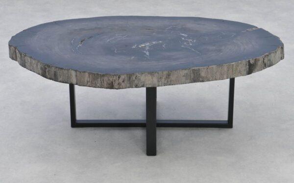 Coffee table petrified wood 37274