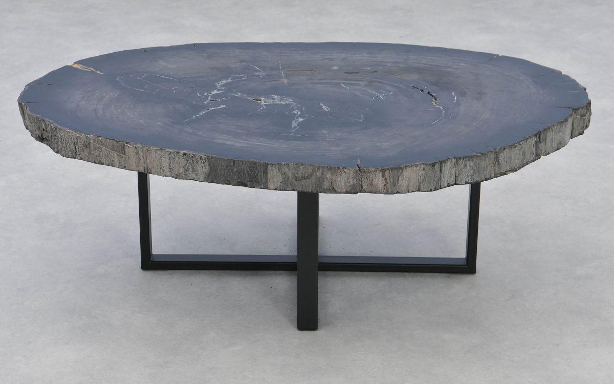 Coffee table petrified wood 37275