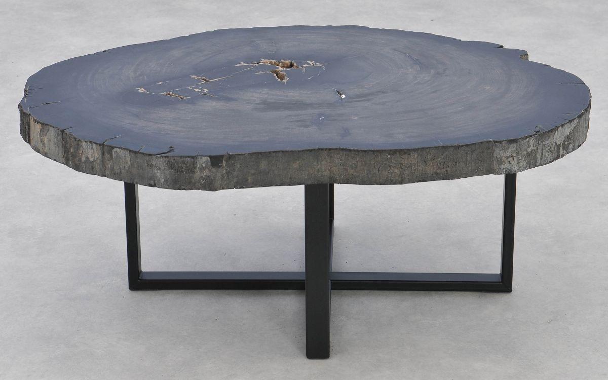 Coffee table petrified wood 37283