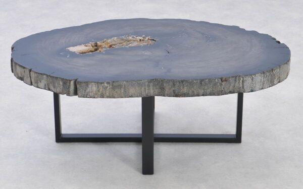 Coffee table petrified wood 37284