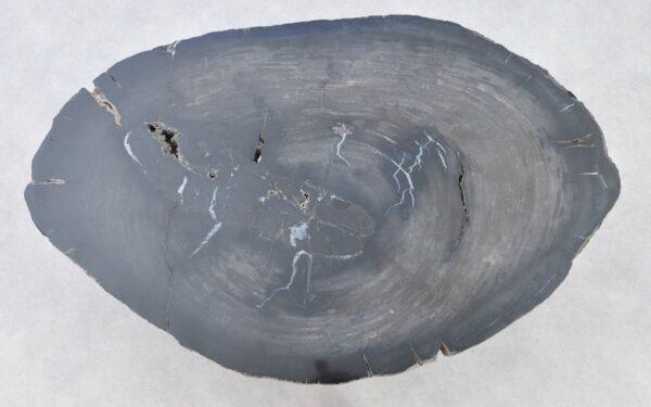 Coffee table petrified wood 37286