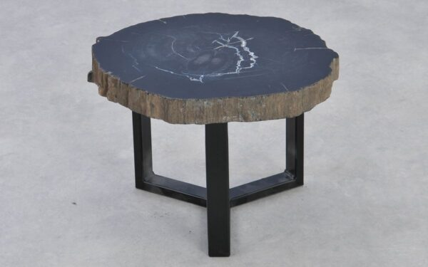 Coffee table petrified wood 37287