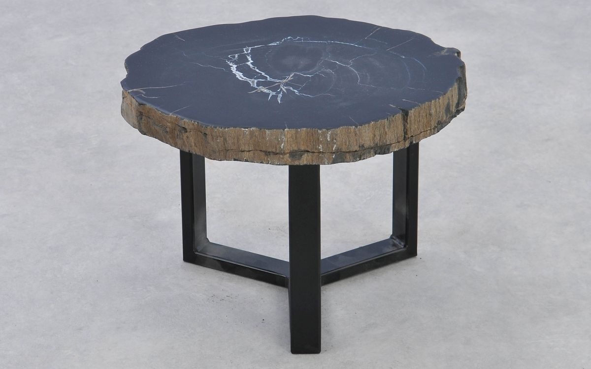 Coffee table petrified wood 37291