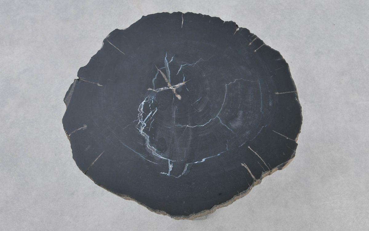 Coffee table petrified wood 37292