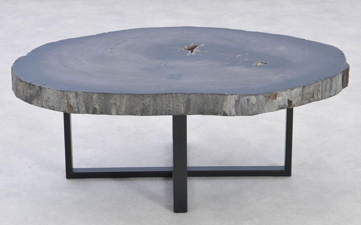 Coffee table petrified wood 37371