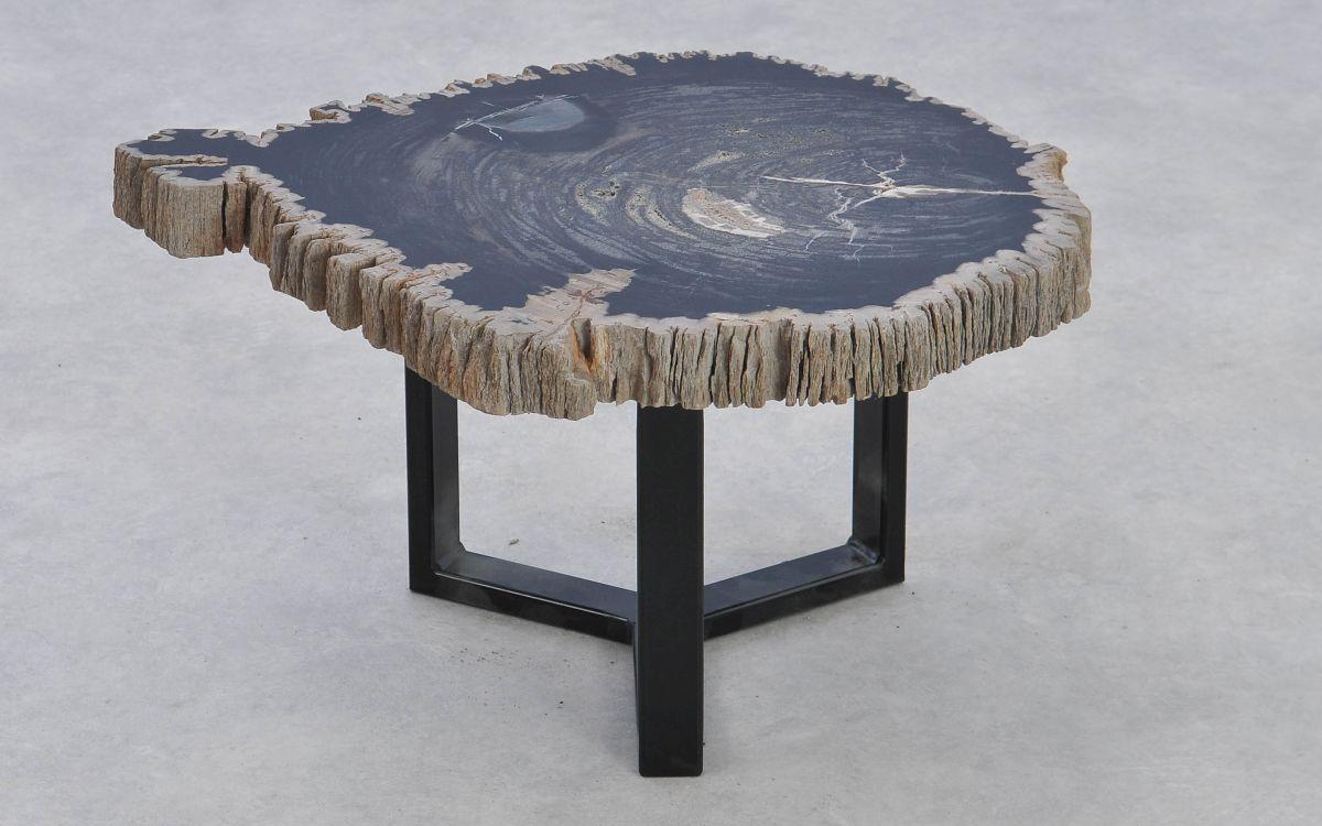 Coffee table petrified wood 37375