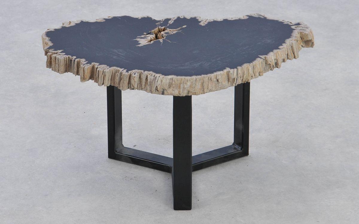 Coffee table petrified wood 37376