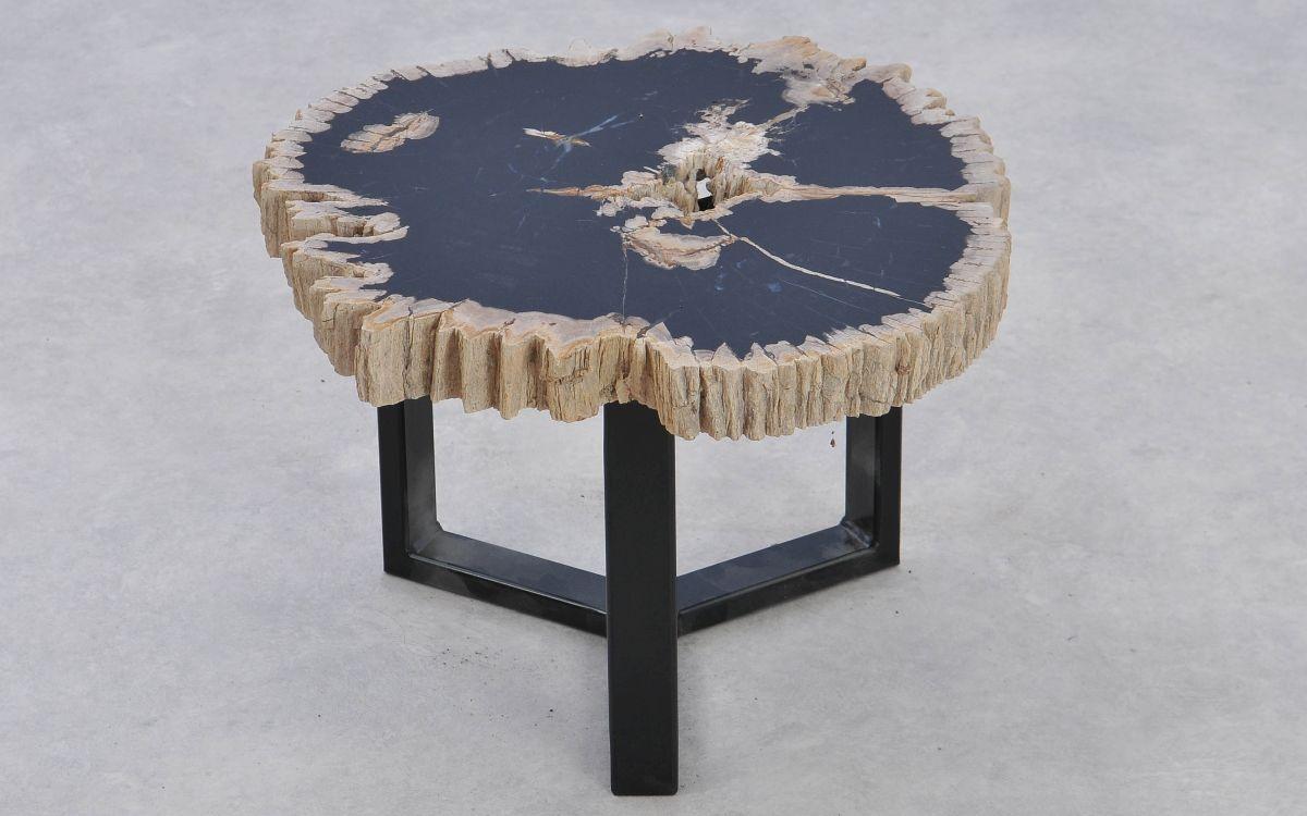 Coffee table petrified wood 37381
