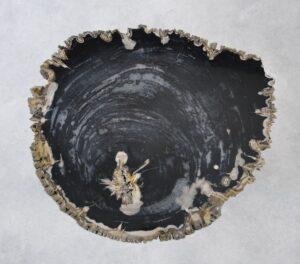 Couchtisch versteinertes Holz 35140