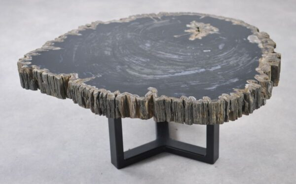 Couchtisch versteinertes Holz 35145